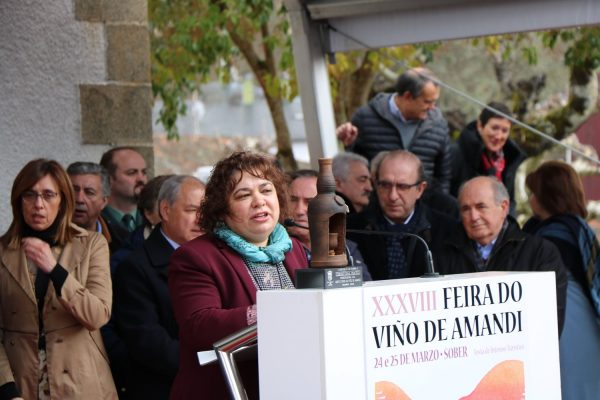 Feria de Viño do Amandi